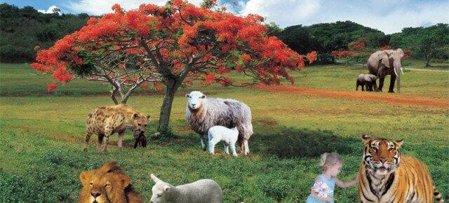 MAM abriga edição especial dos Salões de Artes Visuais da Bahia